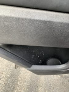 dog hair in car door interior